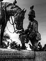 Horse Memorial Port Elizabeth-001.jpg