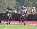 Horses racing (2881788659).jpg