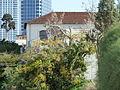 Houses in Neve Tzedek P1080269.JPG