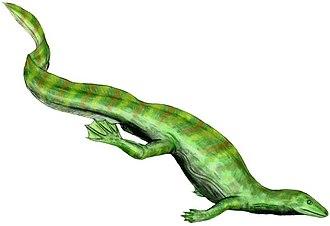 Neodiapsida - Image: Hovasaurus BW flipped