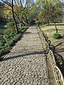 Humble Administrator's Garden in Suzhou, China (2015) - 09.JPG