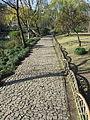 Humble Administrator's Garden in Suzhou, China (2015) - 09.JPG