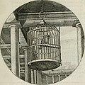 Iacobi Catzii Silenus Alcibiades, sive Proteus- (1618) (14563161887).jpg