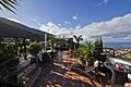 Icod de los Vinos, Santa Cruz de Tenerife, Spain - panoramio (24).jpg