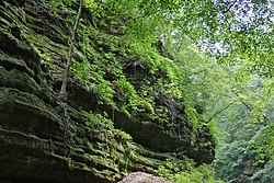 Illinois Canyon - panoramio.jpg