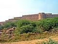 India-6420 - Flickr - archer10 (Dennis).jpg