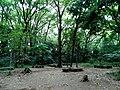 Institute for Nature Study - panoramio.jpg