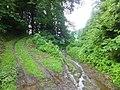 Inubushi, Tokamachi, Niigata Prefecture 942-1504, Japan - panoramio (2).jpg