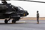 Iron Hawk 14 in Saudi Arabia 140412-Z-AR422-100.jpg