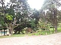 Itupeva - SP - panoramio (3381).jpg
