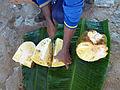Jak fruit-Sri Lanka (2).jpg