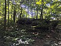 Jake's Rocks Overlook Trail - 20200806 - 03.jpg