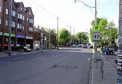 Looking north on Jane Street, with the neighbourhood located west of the roadway
