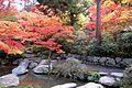 Japanese Garden (15853202616).jpg