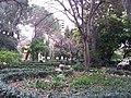 Jardín de Monforte 84.jpg