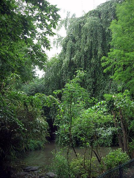 File jardin de la vall e suisse 3 jpg wikimedia commons - Jardin de la vallee ...