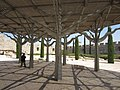Jerusalem Shade! Jerusalem Archaelogical Park (6036462212).jpg