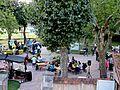 Journée des associations dans le parc de la mairie.jpg