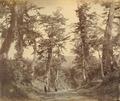 KITLV - 89919 - Beato, Felice - Tōkaidō road in Japan - presumably 1863-1865.tif