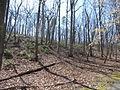 Kings Mountain National Military Park - South Carolina (8558890936) (2).jpg