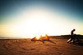 Kite on Beach (6943081764).jpg