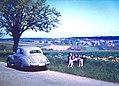 Koenigsbronn-Zang 1963.JPG