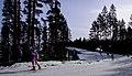 Kontiolahti Biathlon World Cup 2014 38.jpg