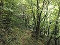 Kostanjica, Montenegro - panoramio (25).jpg