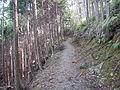 Kumano Kodo kogumotorigoe World heritage26.JPG