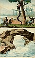 L'Europe et l'Amérique comparées (1818) (14780717792).jpg