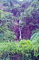 LK-ceylon-tee-plantage-wasserfall.jpg