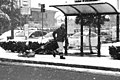 La Cavalcata Dell Inverno (26848641).jpeg