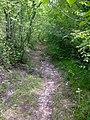La Paille Basse - panoramio (2).jpg