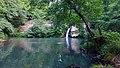 La diga sul fiume Mignone.jpg