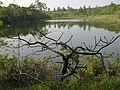 Lago Ness - panoramio - EngPauloRR.jpg