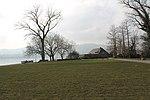 Lake Zurich - panoramio (59).jpg