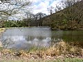 Lake at Abaty Cwm Hir - geograph.org.uk - 1581874.jpg