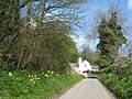 Lane to Cilcain on The Clwydian Way - geograph.org.uk - 1250554.jpg