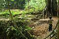 Las preciosas cascadas de Agua Azul, Chiapas. 23.JPG