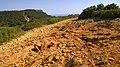 Le Cap Canaille - panoramio (1).jpg
