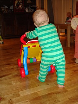 Learning to walk by pushing wheeled toy