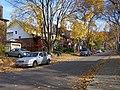 Leaves & Street (63427739).jpg