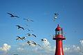 Lighthouse at Gungpyeong Port (9524294506).jpg