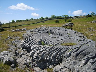 Grange-over-Sands - Limestone pavement on the flanks of Hampsfell