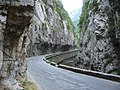 Limestone gorge (1071691724).jpg