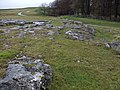 Limestone outcrop at Oddendale - geograph.org.uk - 1044294.jpg
