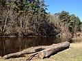 Log next to Pirita River - panoramio.jpg