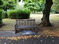 Long shot of the bench (OpenBenches 8053-1).jpg
