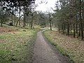 Longshaw Estate - Footpath View - geograph.org.uk - 752247.jpg
