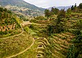 Longsheng Rice Terraces November 2017 021.jpg